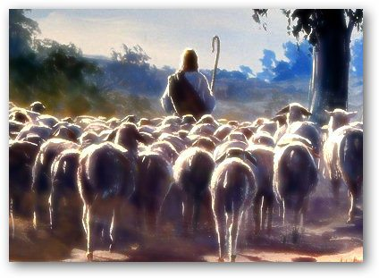 pastor delante de sus ovejas